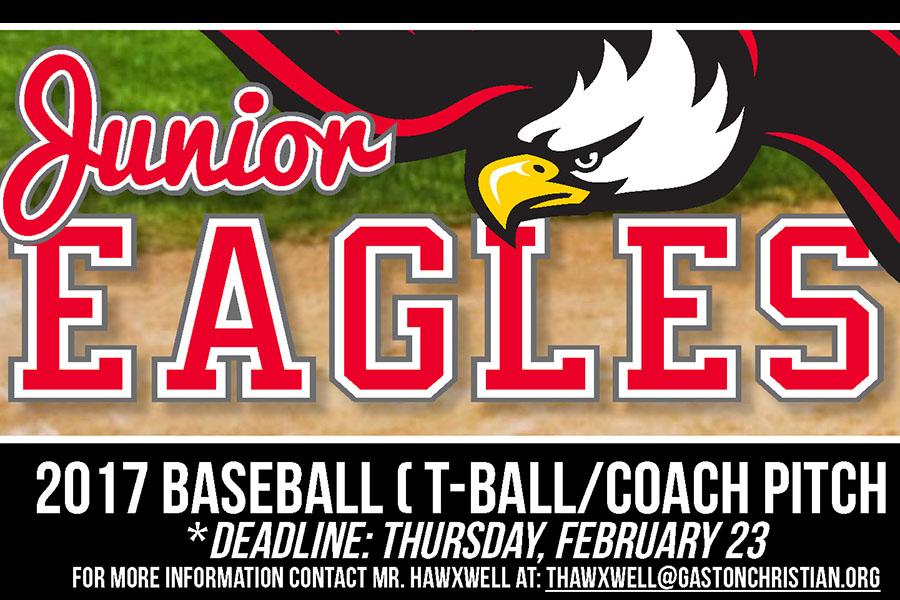 Junior Eagles 2017 baseball ( T-ball/Coach pitch )
