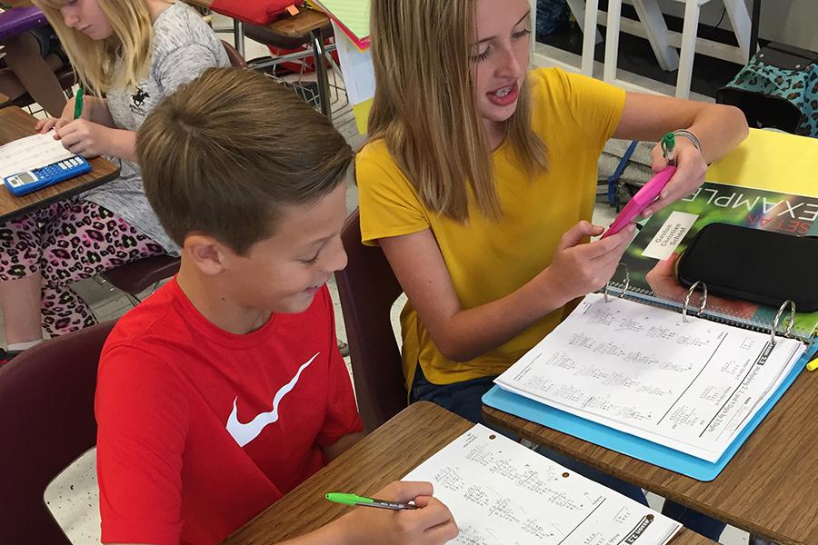 6th Grade Math Buddies