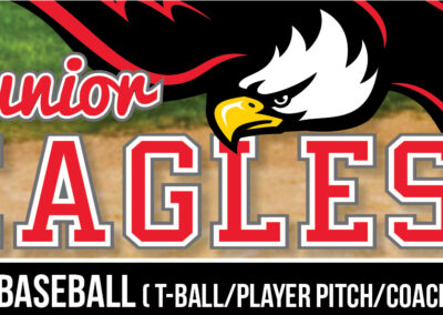 Junior Eagles 2020 Baseball Registration